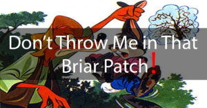 Dont-Throw-Me-in-That-Briar-Patch!