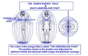the human energy field
